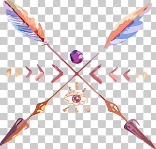 Feather Drawing Arrow Euclidean PNG