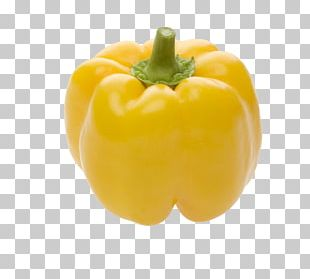 Chili Pepper Yellow Pepper Bell Pepper Pimiento Hosur PNG