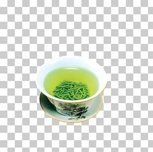 Green Tea Jasmine Tea Teacup PNG