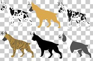 Cat Dog Breed Tiger Non-sporting Group PNG