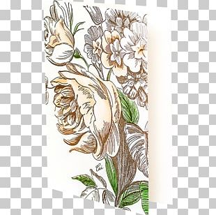 Floral Design Cut Flowers Rose Family PNG