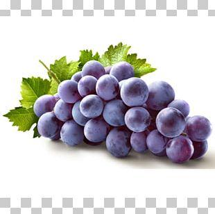 Concord Grape Juice Common Grape Vine Fruit PNG