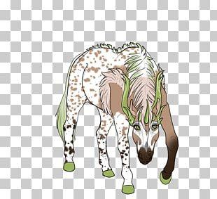 Giraffe Horse Fauna Illustration Tree PNG