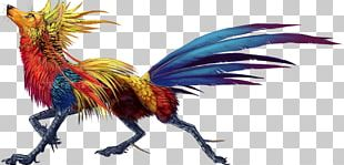 Rooster Feather Beak Legendary Creature Chicken As Food PNG
