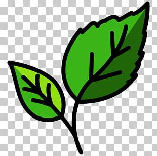 Leaf Computer Icons Ecology PNG