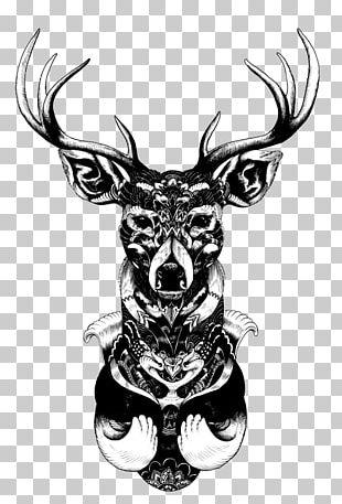 Artist Drawing Illustrator PNG