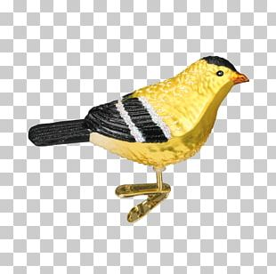 Finches Bird Christmas Ornament American Goldfinch PNG
