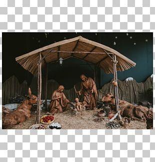 Nativity Scene Christmas Gospel Of Luke Nativity Of Jesus Gift PNG