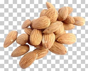 Nut Almond PNG