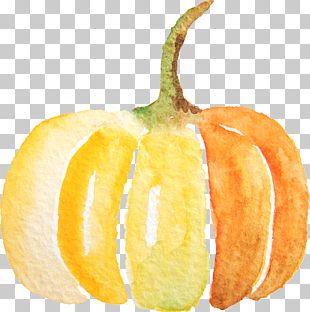 Pumpkin Spice Latte Calabaza PNG