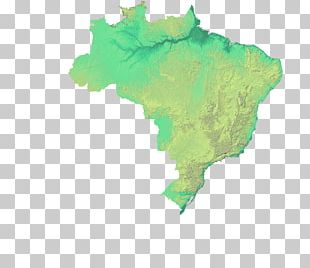 Brazil Graphics World Map Illustration PNG