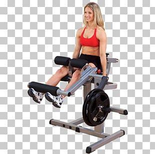 Leg Curl Leg Extension Leg Press Calf Raises Strength Training PNG