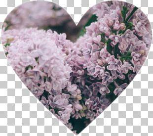 Wedding Blog Flower PNG