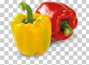 Chili Pepper Yellow Pepper Cayenne Pepper Bell Pepper Friggitello PNG