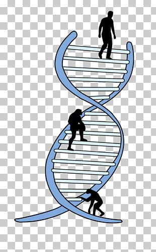 Genetics La Ingenieria Genetica Genetic Engineering Biology PNG