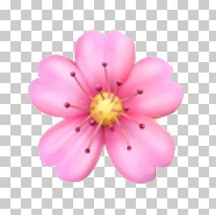 Emoji Domain Flower PNG