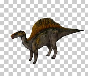 Jurassic Park: Operation Genesis Ouranosaurus Spinosaurus Velociraptor Dinosaur PNG
