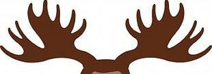 Moose Deer Antler Elk PNG