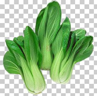 Komatsuna Choy Sum Organic Food Leaf Vegetable Chinese Cabbage PNG