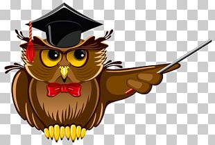 Doctorate Academic Degree Doctor Of Philosophy Student University PNG