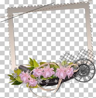 Frames Photography Floral Design Film Frame PNG