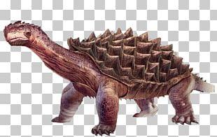 ARK: Survival Evolved Turtle Carbonemys Tyrannosaurus Dinosaur PNG
