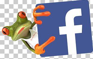 Social Media Marketing Social Network Facebook PNG