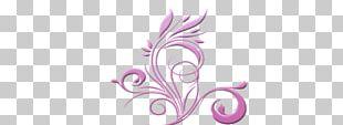 Floral Design Flower Drawing PNG