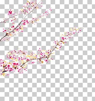 Cherry Blossom Pink M Petal ST.AU.150 MIN.V.UNC.NR AD PNG