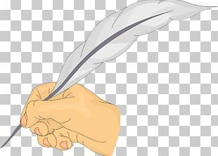 Feather Pen Illustration PNG
