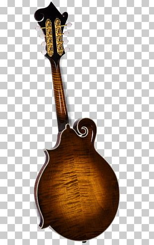 Mandolin Musical Instruments Acoustic-electric Guitar Tiple Amazon.com PNG