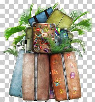Baggage Travel Suitcase Hotel PNG
