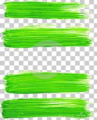 Green Brush Paint Illustration PNG