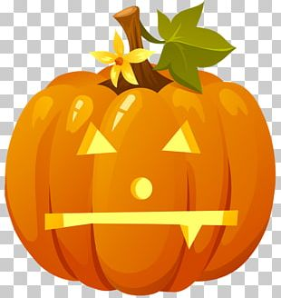 Jack-o'-lantern Pumpkin Halloween Drawing PNG