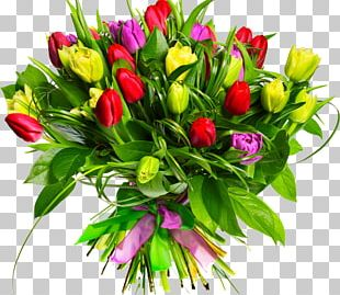 Flower Bouquet Tulip Cut Flowers PNG