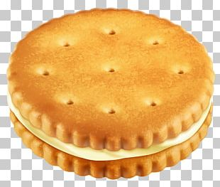 Chocolate Chip Cookie Biscuit Custard Cream PNG