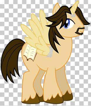 My Little Pony BronyCon Twilight Sparkle Winged Unicorn PNG