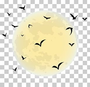 By The Light Of The Halloween Moon Black Moon PNG