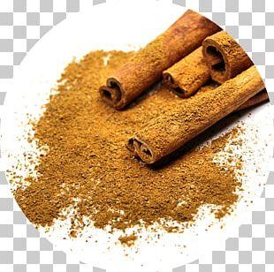 Chinese Cinnamon Spice Cinnamomum Verum Bark PNG