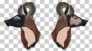 Sheep Cattle Horse Goat Horn PNG
