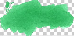 Green Leaf Watercolor Painting Blue Red PNG