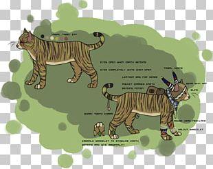 Tiger Lion Cat Ecosystem Fauna PNG