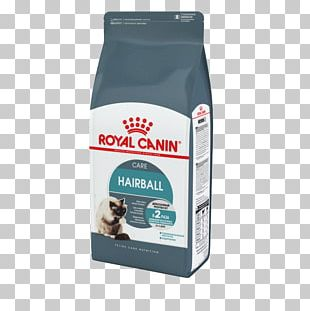 Cat Food Bengal Cat Dog Royal Canin Kitten PNG