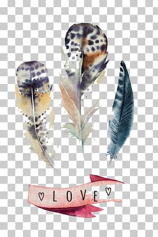 Feather Watercolor Painting Canvas Print PNG