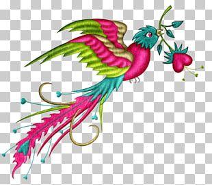 Bird Phoenix Color PNG
