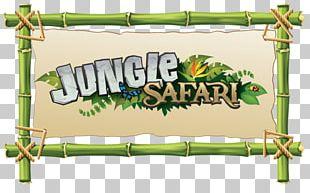 Jungle Safari Rainforest PNG