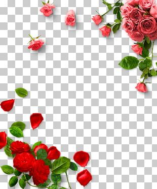 Garden Roses Valentines Day PNG