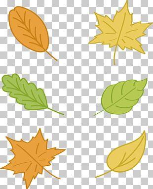 Maple Leaf Autumn Euclidean Yellow PNG
