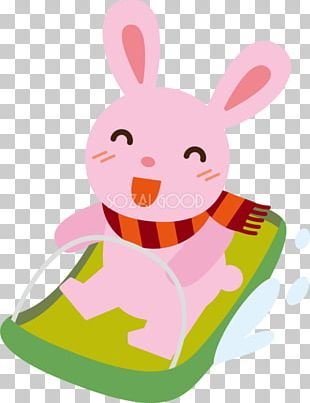 Rabbit Easter Bunny PNG