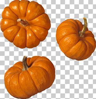 Trio Pumpkin PNG